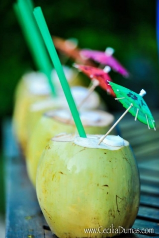 Coconuts with straws and small umbrellas in them