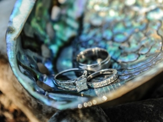 Wedding rings on abalone shell